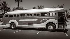 Old Greyhound Bus No.2_-2