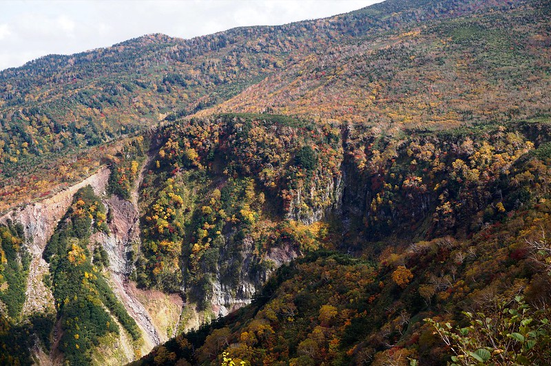 """Tinted autumn leaves of """"KAGA ZENJOUDOU"""""""