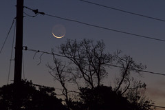 The New Moon in the Arms of the Old One
