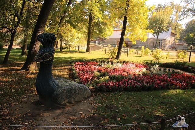 Eisbär Fiete im Sosto Zoo 01.10.2017 071