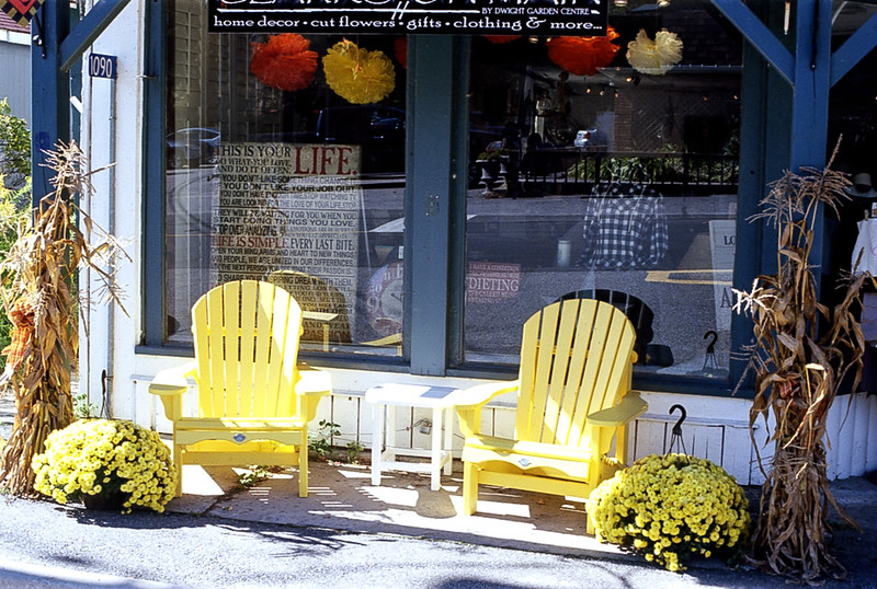 Pair of Yellow Chairs