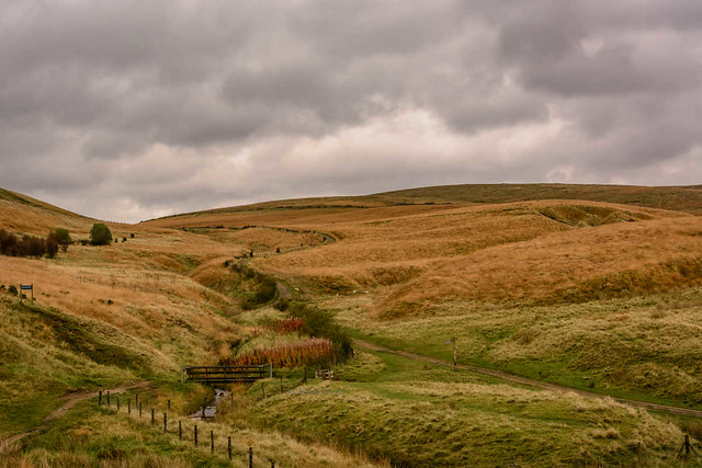 DSC_0069 - Lancashire moorland