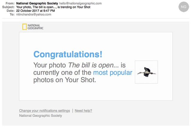 Your photo The bill is open is trending on Your Shot