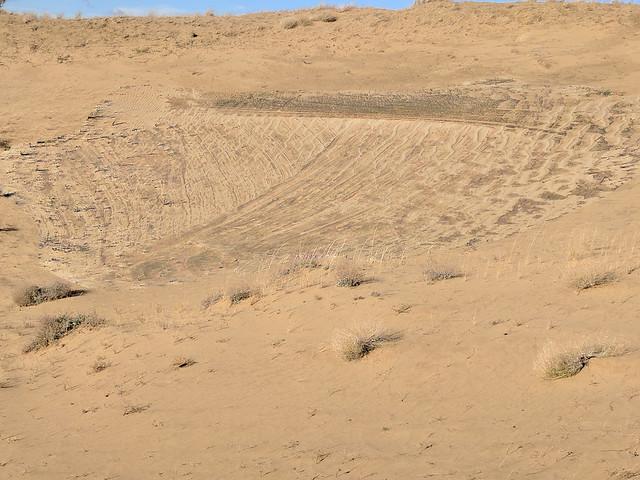 GSA field trip day 3 - dune deposit complexities (enhanced contrast)