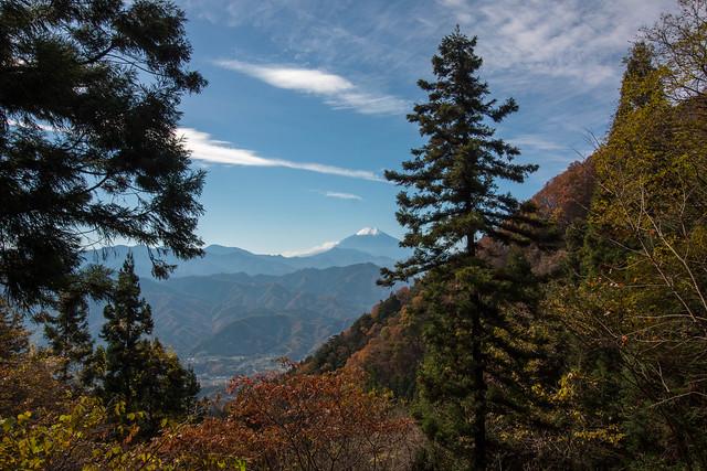 20151121_扇山_0084.jpg