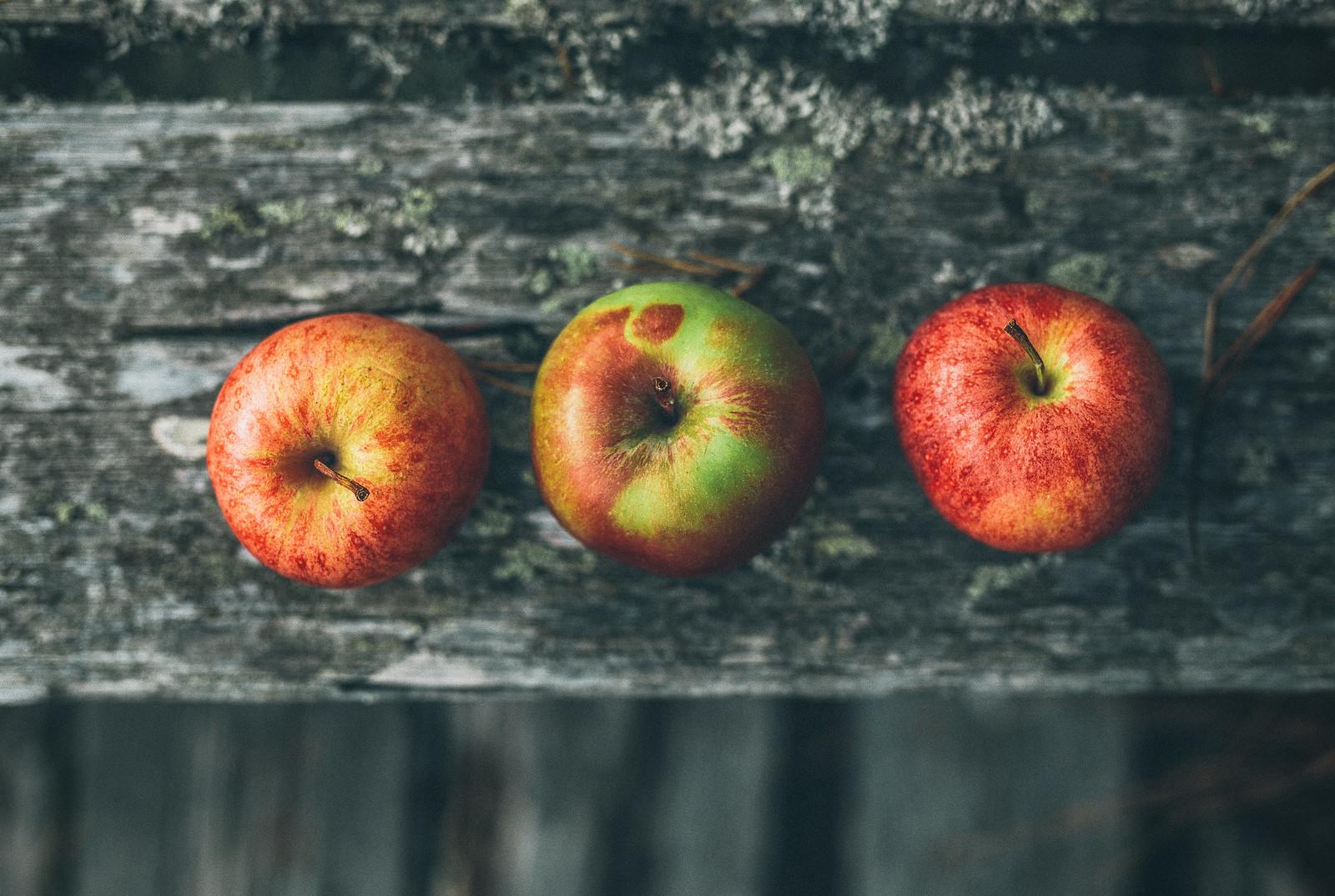 äpplen - karinevelina.se
