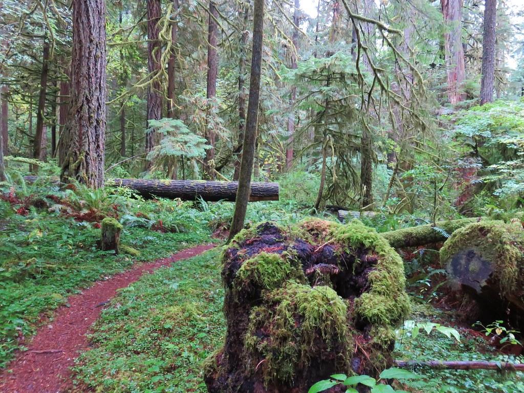 Deception Butte Trail