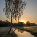 Sonneaufgang Wietze 04