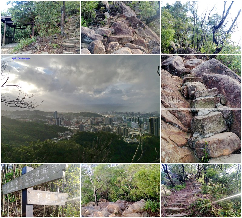 TAIPEI-bush walking-台北郊山健行-內湖金面山剪刀石-17度C隨拍 (13)