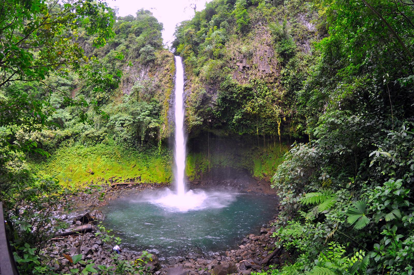 Viajar a Costa Rica / Ruta por Costa Rica en 3 semanas ruta por costa rica - 26473061439 c13a0d0b2d h - Ruta por Costa Rica en 3 semanas