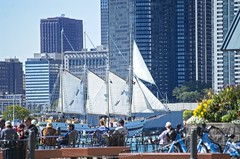Sailing on the good ship Windy of Chicago