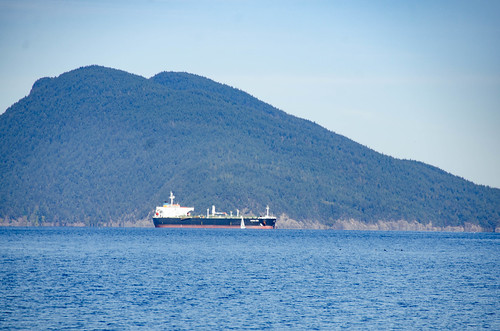 Ships on Samish Bay-002