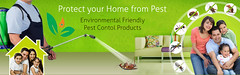Growing pest control provider in Delhi