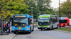 Montgomery County Transit Ride On 2016 Gillig Low Floor Advantage Diesel #44016D & 2017 Gillig Low Floor Advantage Diesel #44068D