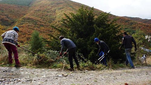 Voluntariado Y Limpieza de Tejo 21-22/10/17