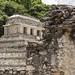 Palenque, templo de las Inscripciones por bruno vanbesien