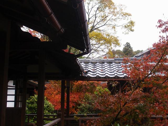anrakuji_kyoto018