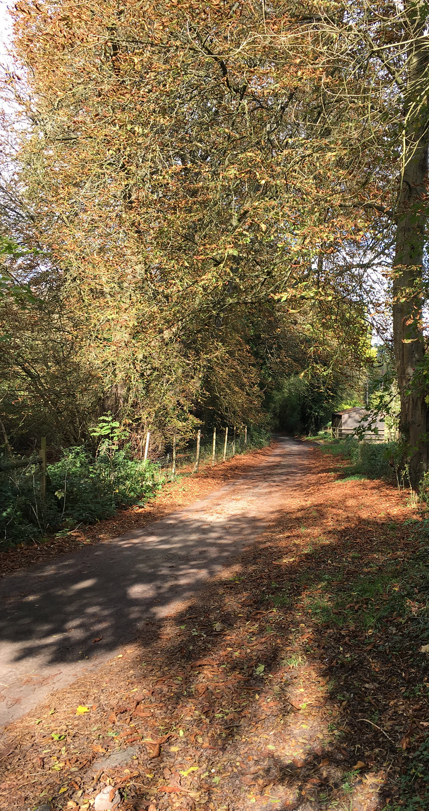 2017-10-08 12.51.15 Woldingham Circular