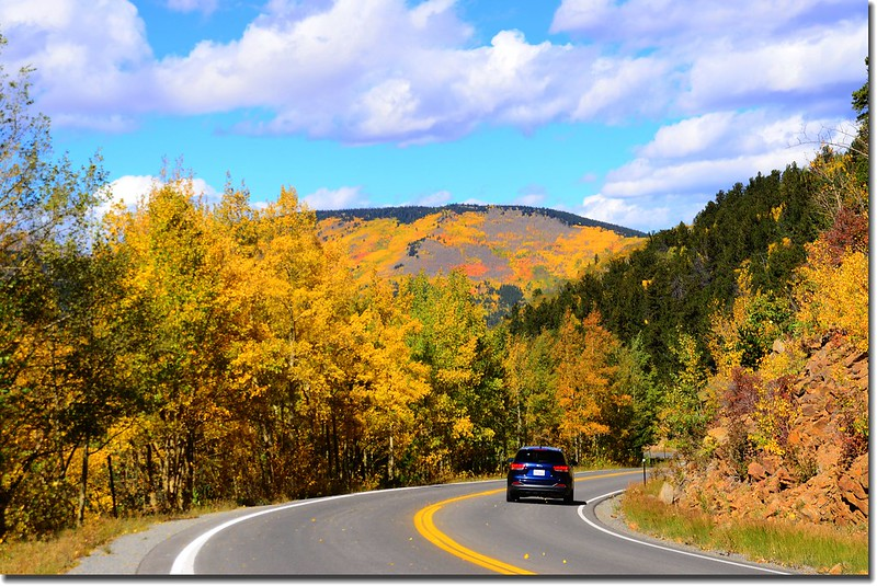 Fall colors, Mount Evans Scenic Byway, Colorado (50)
