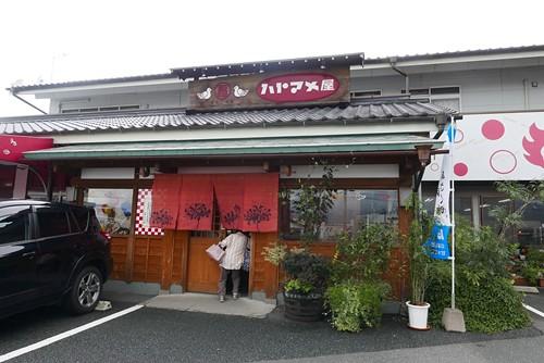 hatomameya004
