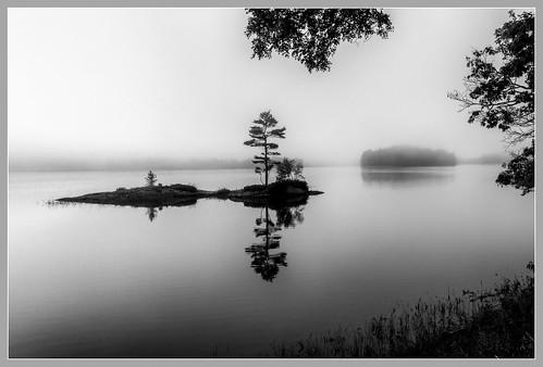 maine topsham fog morning islet island androscoggin river bw monotone silverefexpro