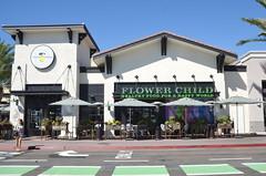 Flower Child (San Diego, CA)