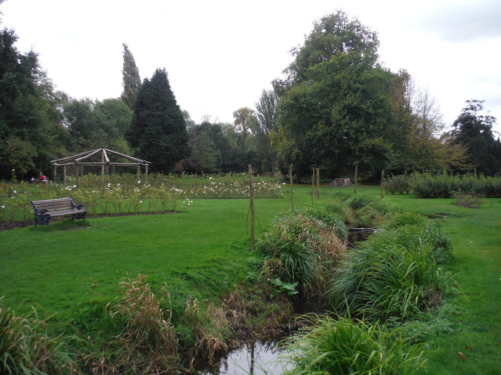 Rose Garden, Morden Hall Park SWC Walk Short 13 - Morden Hall Park and Merton Abbey Mills