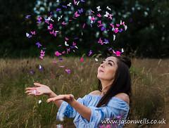 Raining butterfly confetti