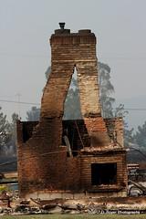 Urban Firestorm Devastation Santa Rosa California