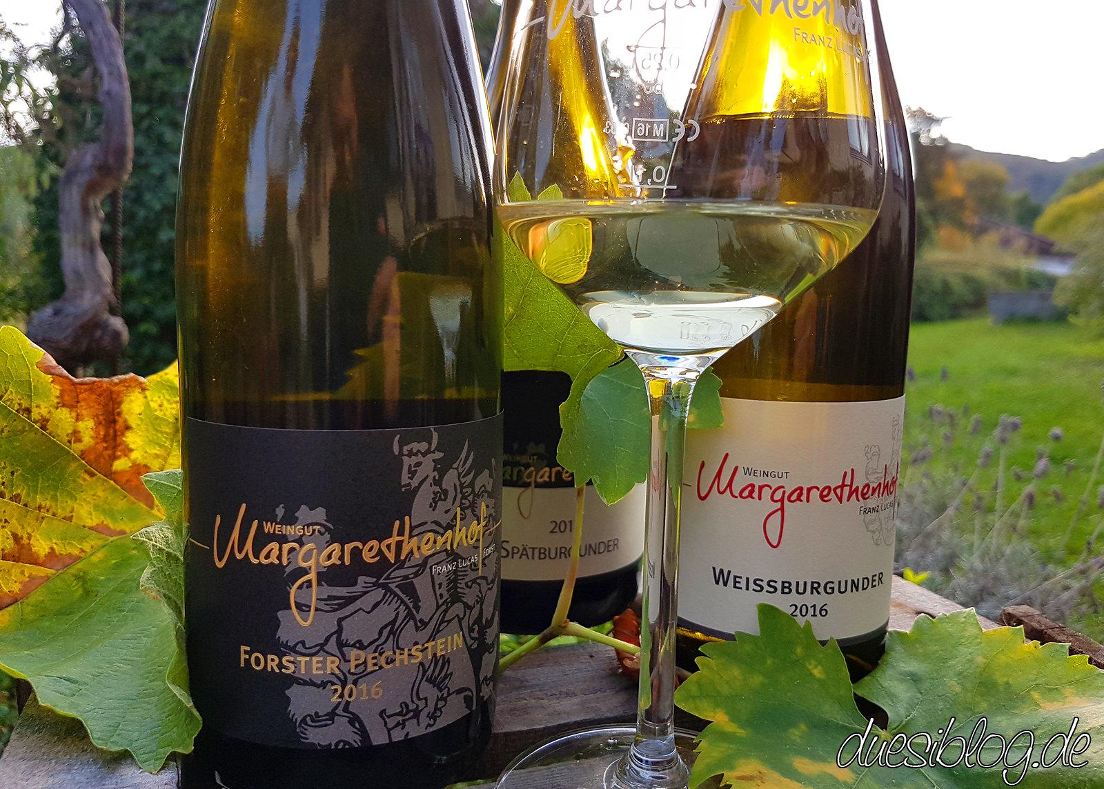 Generation Pfalz Weingut Margaretenhof duesiblog 02