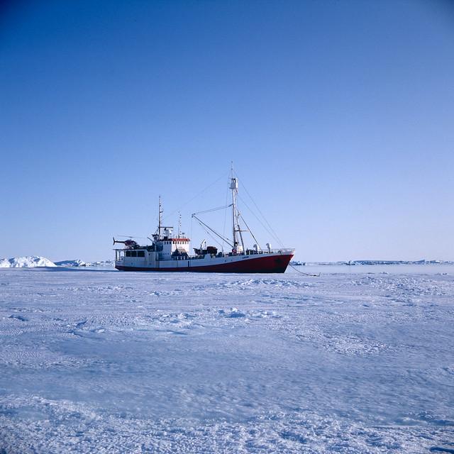 Antarctica91_66_3.jpg