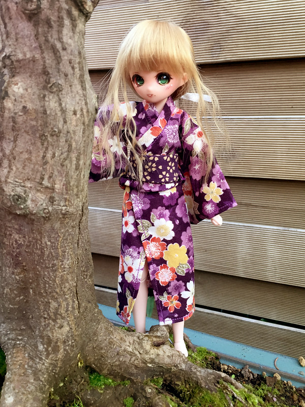 [Obitsu 24-Petite Hime] Ma Petite Hina <3 37830796652_524be47f48_c