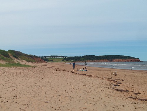 West towards cottages, North Rustico Beach #pei #princeedwardisland #northrustico #rustico #beach #gulfofstlawrence #latergram