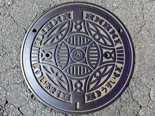 Iruma Saitama, manhole cover (埼玉県入間市のマンホール)
