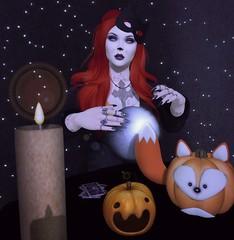 happy halloween! =^.^=