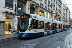 TPG Tram Stadler Tango Be 6/10 1803