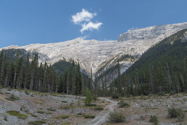 Smith Dorrien Trail views