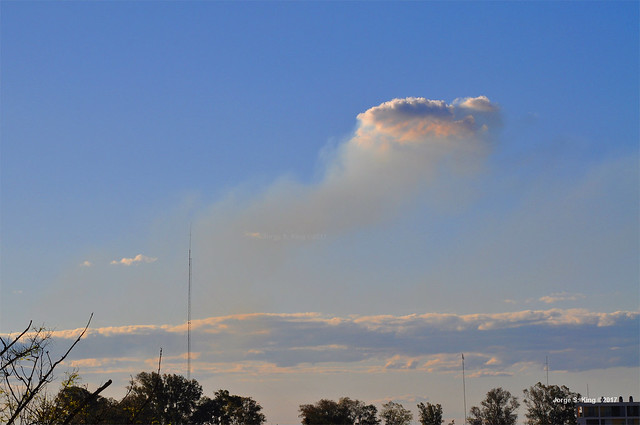 Rara nube