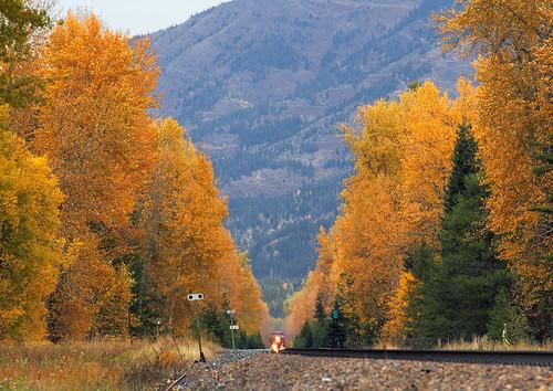 canadianpacific cp coaltrain autumn fallcolor cpcranbrooksub milepost27 hosmer britishcolumbia canada train railroad bc vee crowsnestpassroute