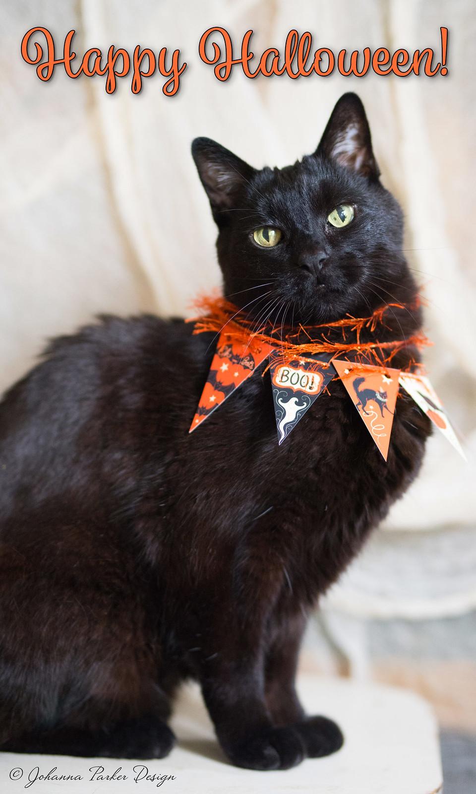 Happy-Halloween-Jack