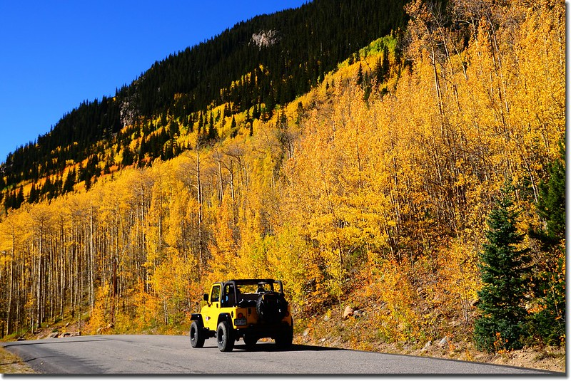 Fall colors, Guanella Pass, Colorado (33)