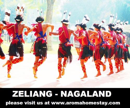zeliang Nagaland 17