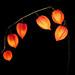 Physalis-Lichterkette