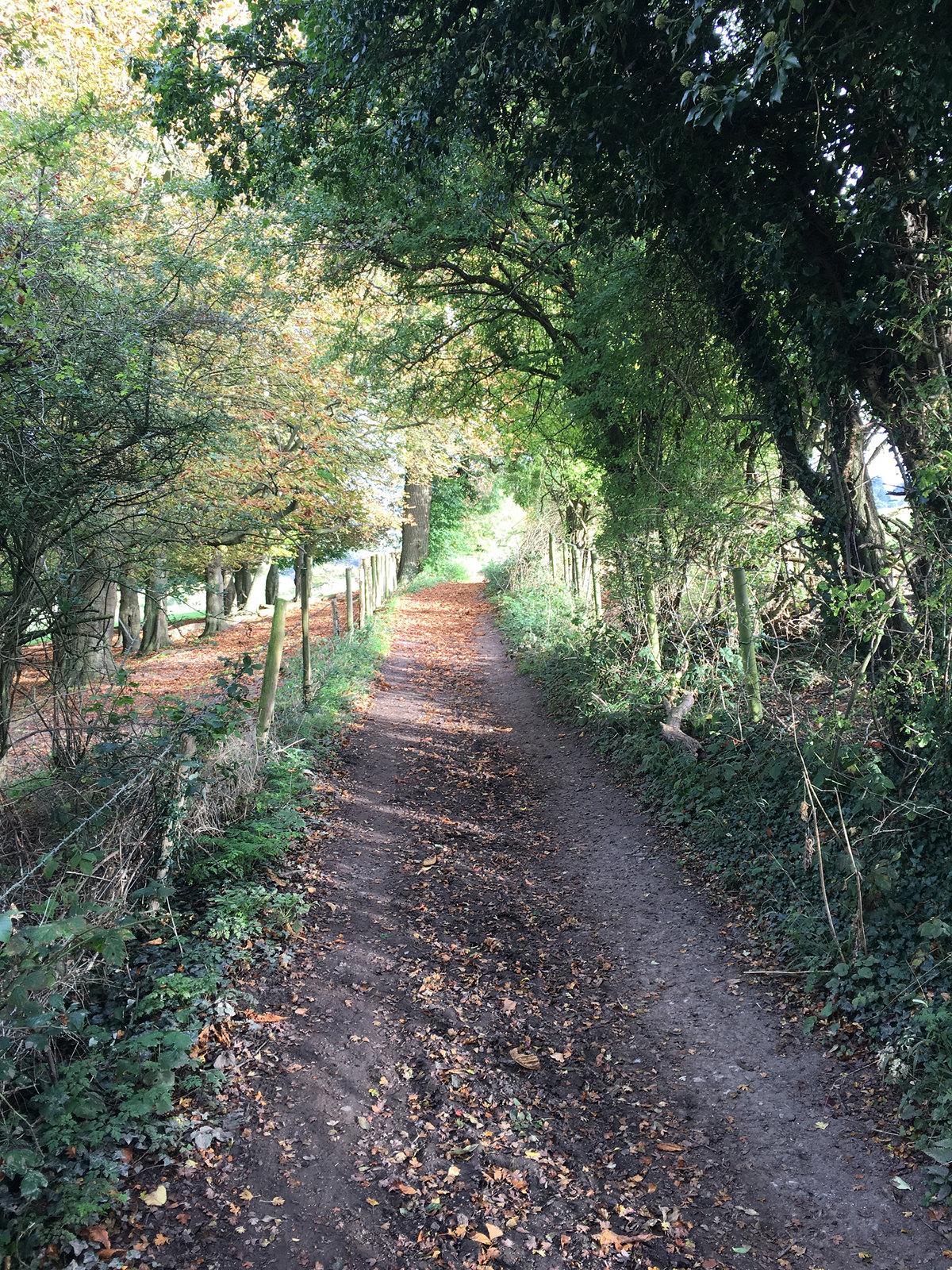 2017-10-08 08.57.47 Woldingham Circular