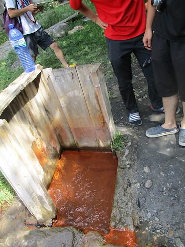 炭酸の泉が湧いていた。鉄の味がした。