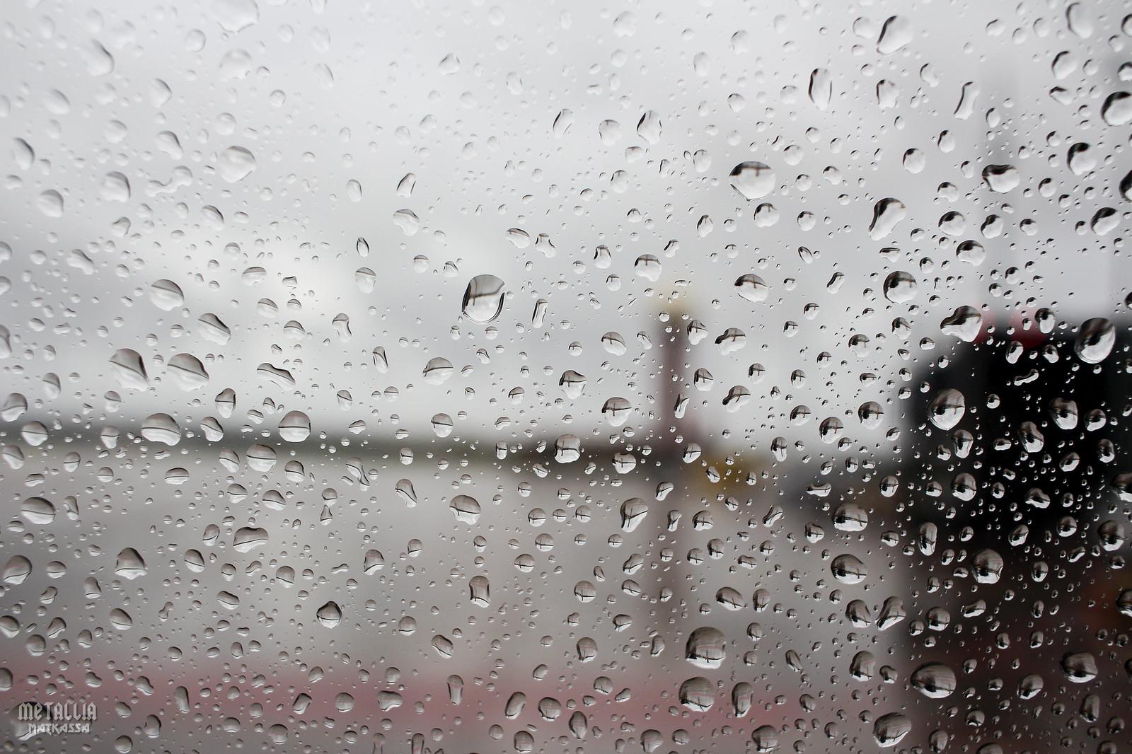 lot polish airlines, lot, polskie linie lotnicze, gdansk port lotniczy