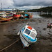 Boats in Tobermory harbour, Mull by sridgway
