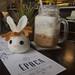 Harvey and my iced latte by enolarama