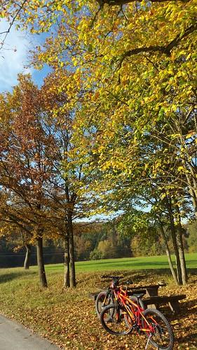 Schöner Herbsttag