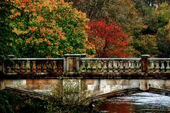 garscube bridge